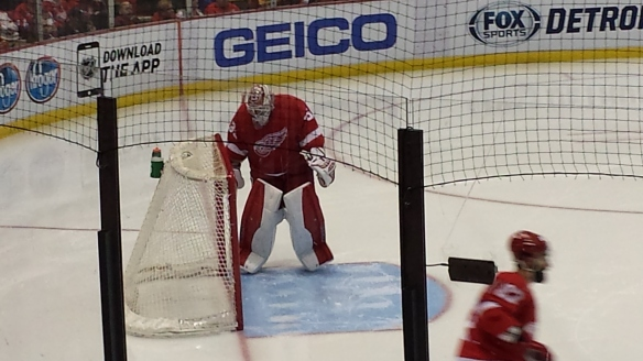 Jimmy Howard scuffs up the crease